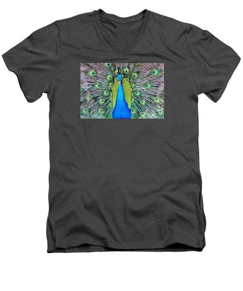 Male Peacock Men's V-Neck T-Shirt by Cynthia Guinn