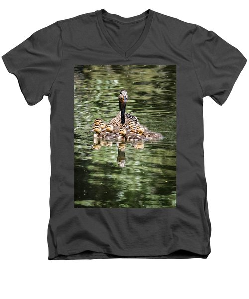 Mallard Hen With Ducklings And Reflection Men's V-Neck T-Shirt