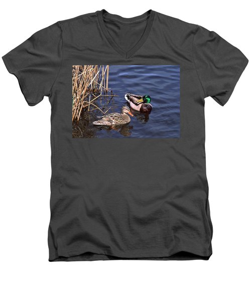 Mallard Mates Men's V-Neck T-Shirt
