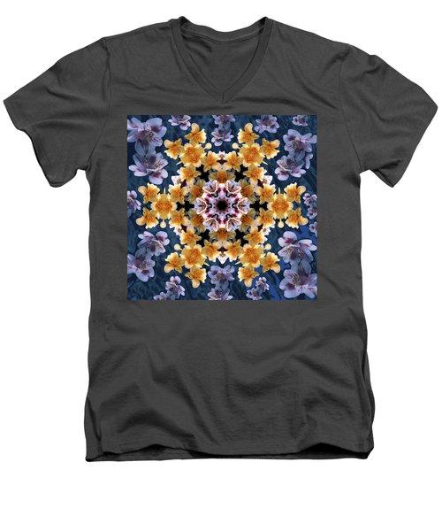 Mandala Alstro Men's V-Neck T-Shirt