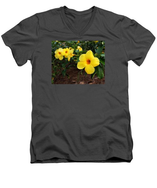 Mandevilla Men's V-Neck T-Shirt by Judy Vincent