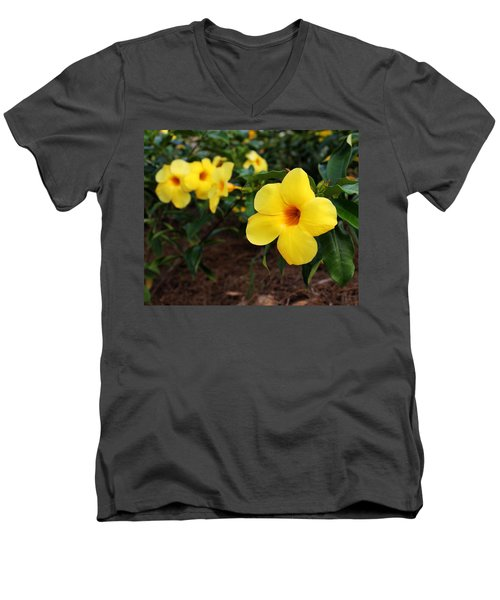 Mandevilla Men's V-Neck T-Shirt