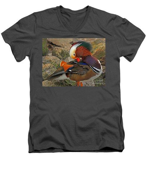 Mandarin Duck Men's V-Neck T-Shirt