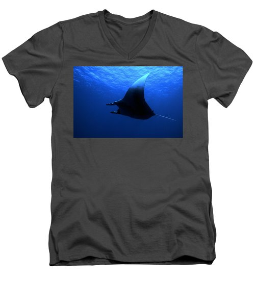 Manta Ray Men's V-Neck T-Shirt