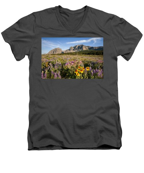 Men's V-Neck T-Shirt featuring the photograph Many Glacier Spring by Jack Bell