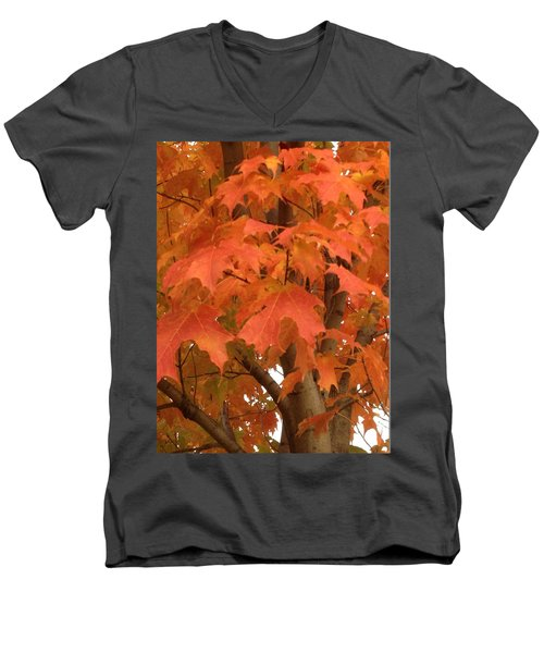Maple Orange Men's V-Neck T-Shirt by Pema Hou