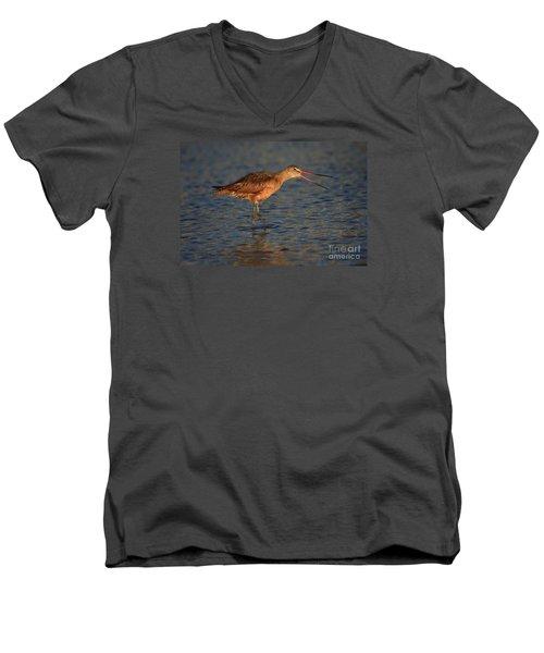 Marbled Godwit Call Men's V-Neck T-Shirt