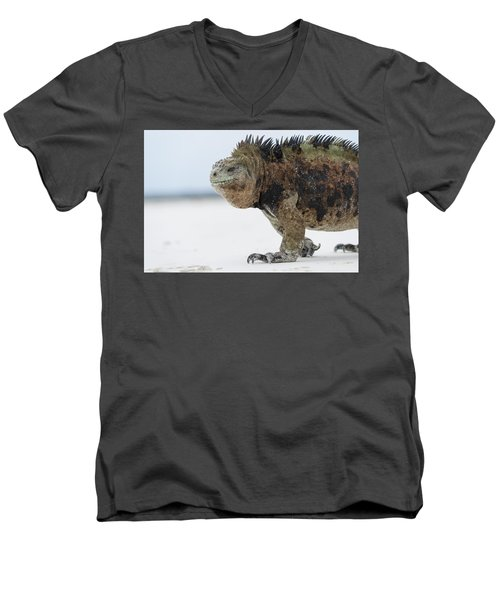 Marine Iguana Male Turtle Bay Santa Men's V-Neck T-Shirt