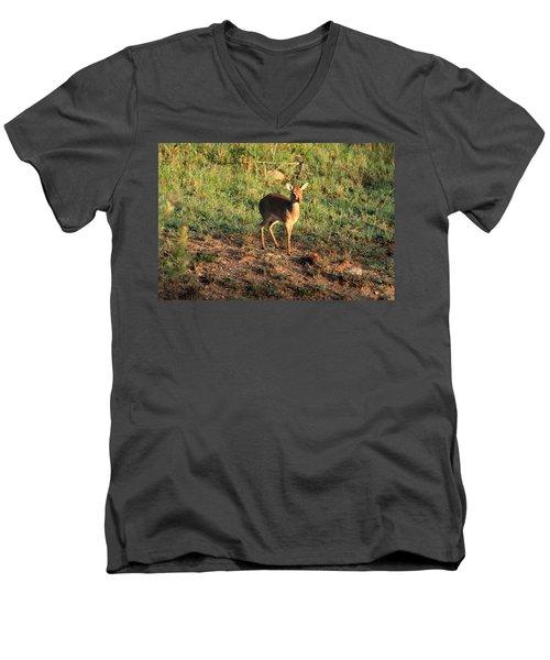 Masai Mara Dikdik Deer Men's V-Neck T-Shirt