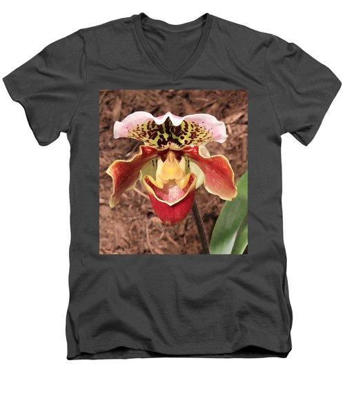 Mating Ritual Men's V-Neck T-Shirt