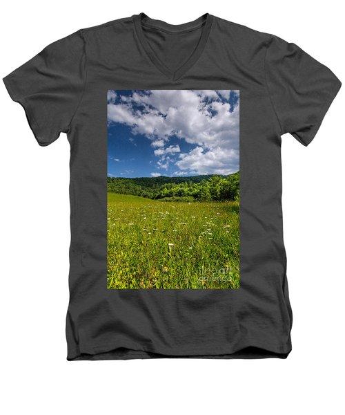 Black Rock Mountains Men's V-Neck T-Shirt