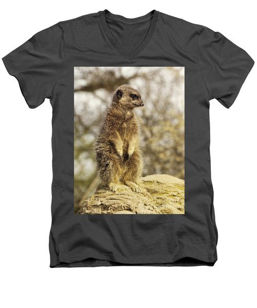 Meerkat On Hill Men's V-Neck T-Shirt
