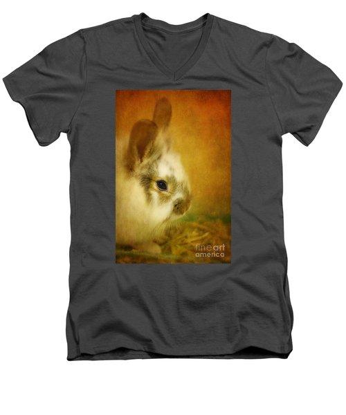 Memories Of Watership Down Men's V-Neck T-Shirt by Lois Bryan