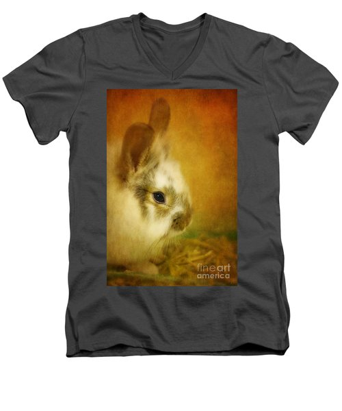 Memories Of Watership Down Men's V-Neck T-Shirt