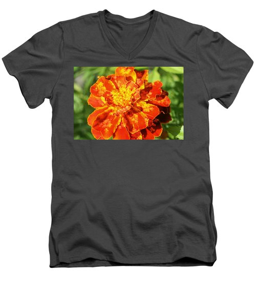 Merry Marigold Men's V-Neck T-Shirt by Barbara S Nickerson