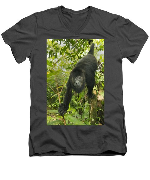 Mexican Black Howler Monkey Belize Men's V-Neck T-Shirt