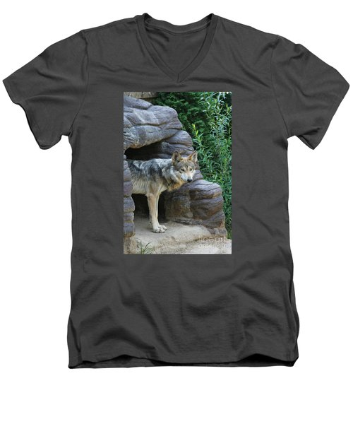 Mexican Wolf #2 Men's V-Neck T-Shirt