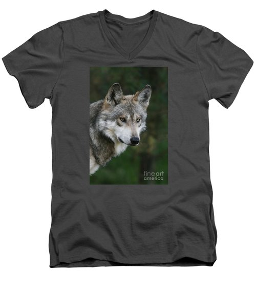 Mexican Wolf #4 Men's V-Neck T-Shirt