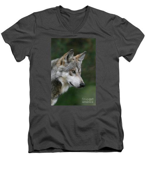 Mexican Wolf #5 Men's V-Neck T-Shirt