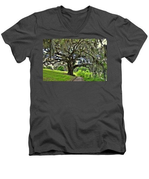 Middleton Place Oak  Men's V-Neck T-Shirt by Allen Beatty