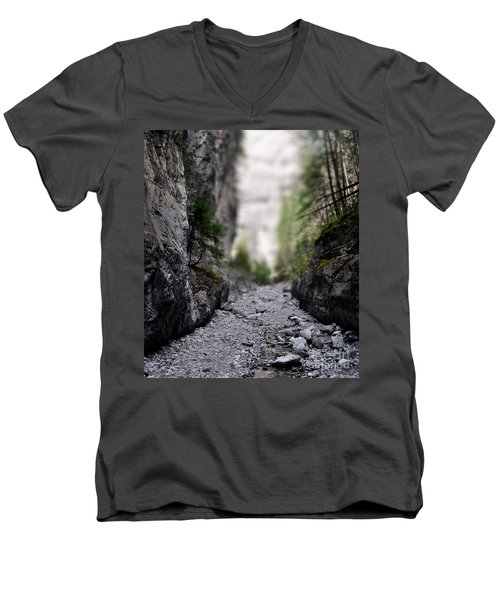 Mini Canyon Men's V-Neck T-Shirt