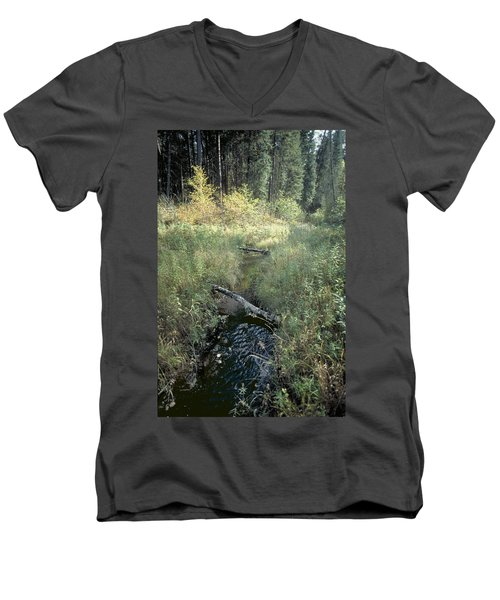 Mississippi River Headwaters Men's V-Neck T-Shirt