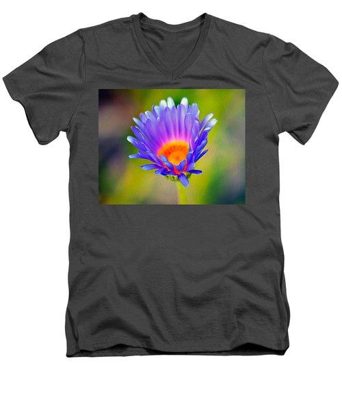 Mojave Aster Men's V-Neck T-Shirt