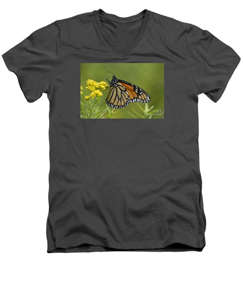 Monarch 2014 Men's V-Neck T-Shirt by Randy Bodkins