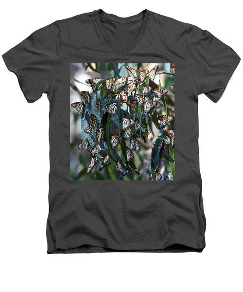 Monarch Butterflies Natural Bridges Men's V-Neck T-Shirt