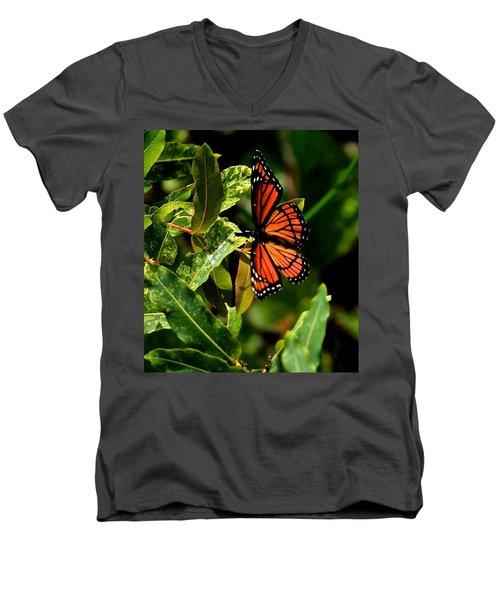 Viceroy Butterfly II Men's V-Neck T-Shirt