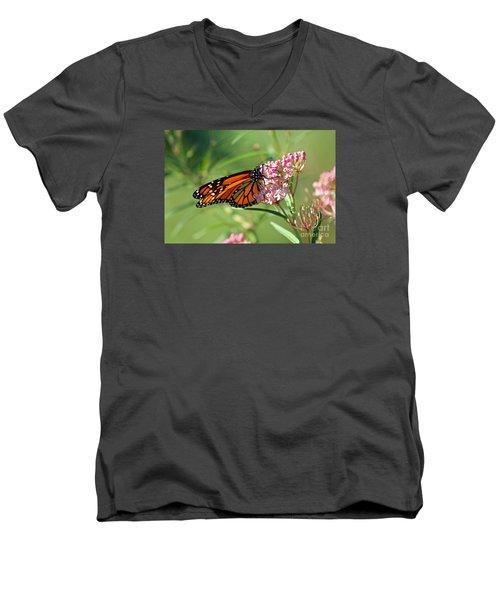 Monarch Butterfly On Milkweed Men's V-Neck T-Shirt