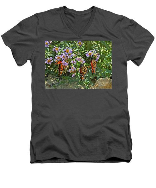 Monarch Butterfly Trio Men's V-Neck T-Shirt