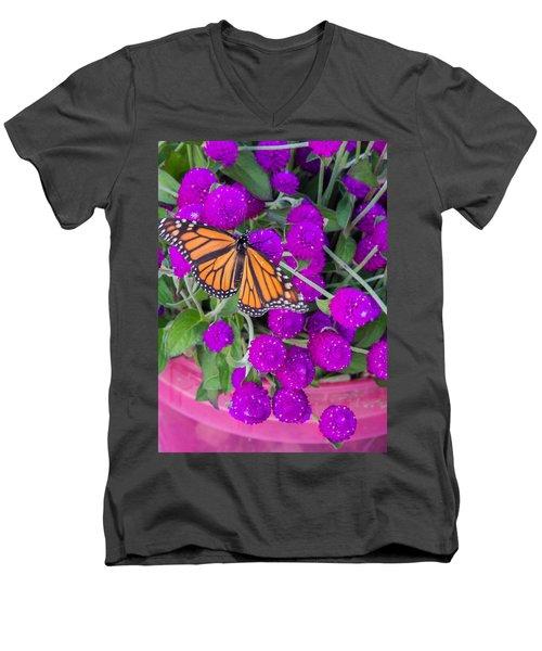 Monarch On Bachelor Buttons Men's V-Neck T-Shirt
