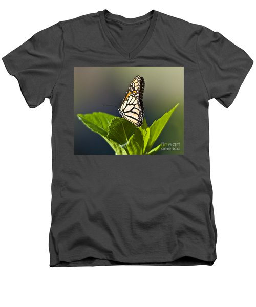 Monark Butterfly No. 2 Men's V-Neck T-Shirt