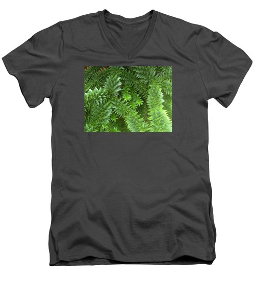 Monkey Puzzle Men's V-Neck T-Shirt