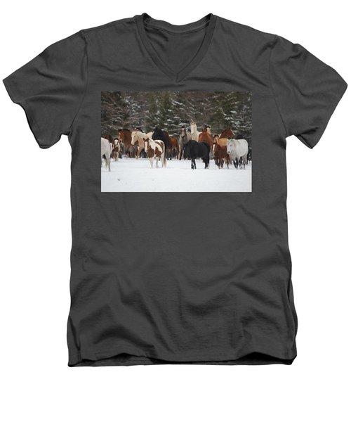 Montana Herd Men's V-Neck T-Shirt by Diane Bohna