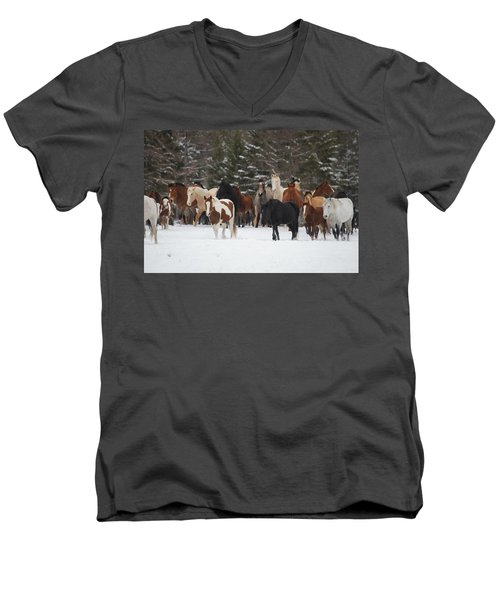 Montana Herd Men's V-Neck T-Shirt
