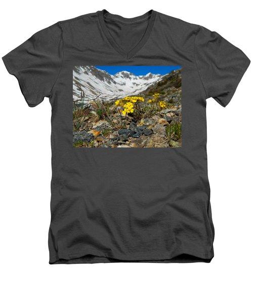 Blue Lakes Colorado Wildflowers Men's V-Neck T-Shirt