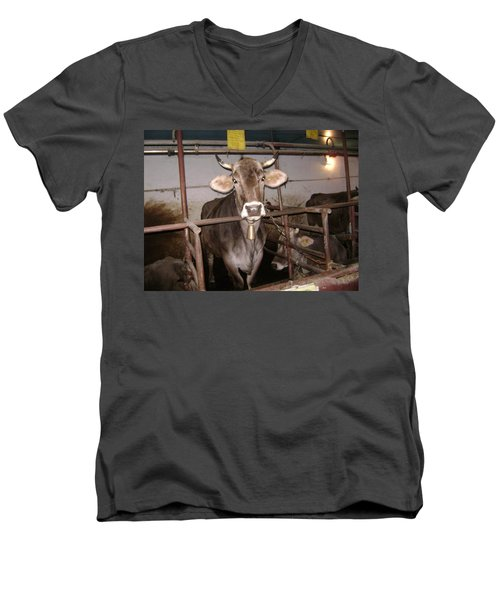 Mooooo Men's V-Neck T-Shirt