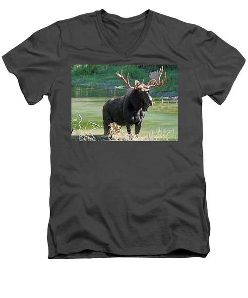 Moose Country Men's V-Neck T-Shirt by Bob Hislop