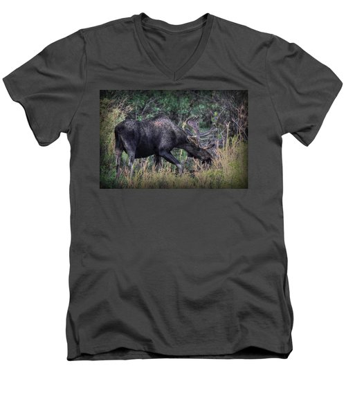 Moose In The Meadow Men's V-Neck T-Shirt