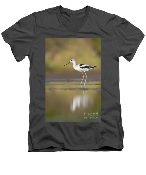 Men's V-Neck T-Shirt featuring the photograph Morning Avocet by Bryan Keil