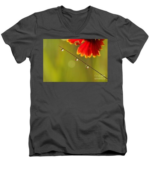 Morning Dew Men's V-Neck T-Shirt by Patrick Shupert