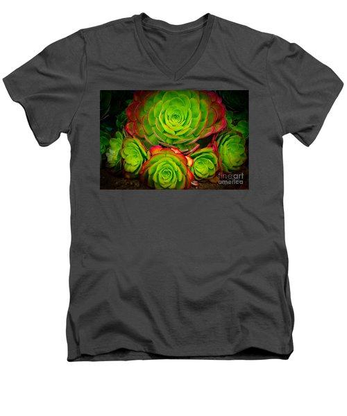 Morro Bay Echeveria Men's V-Neck T-Shirt