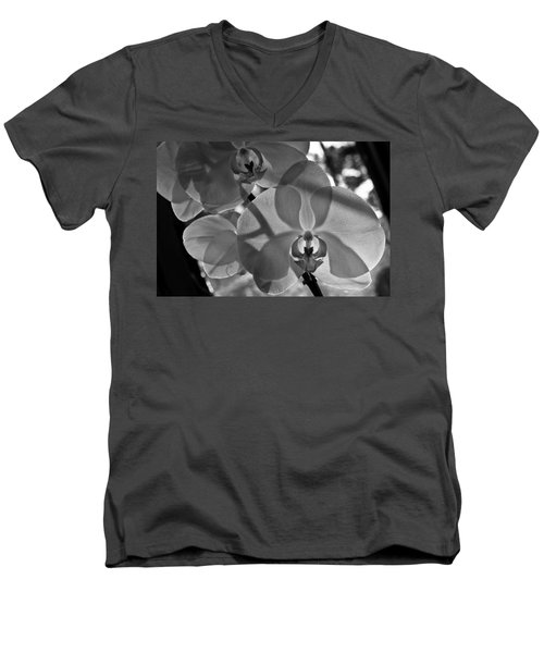 Men's V-Neck T-Shirt featuring the photograph Moth Orchid Backlit by Ron White