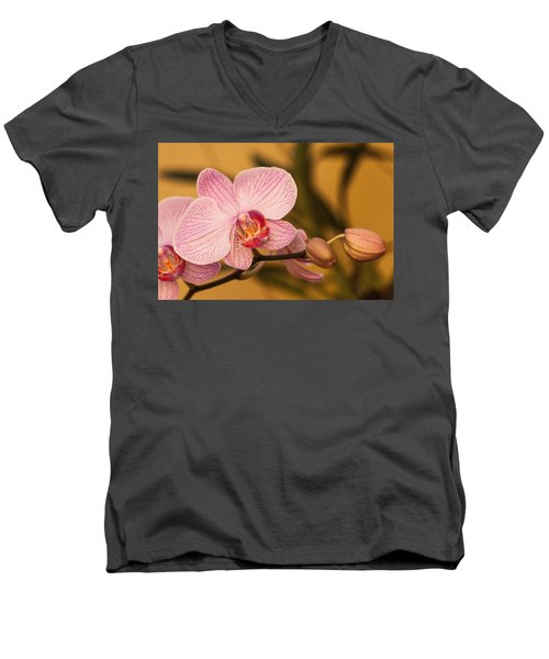 Moth Orchid Men's V-Neck T-Shirt