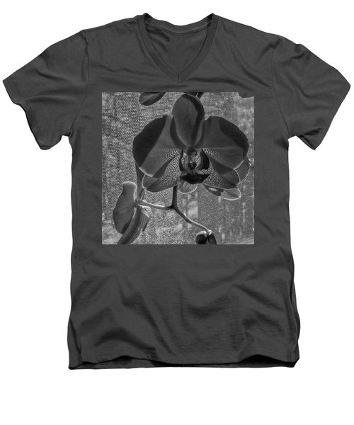 Men's V-Neck T-Shirt featuring the photograph Moth Orchid In Window by Ron White