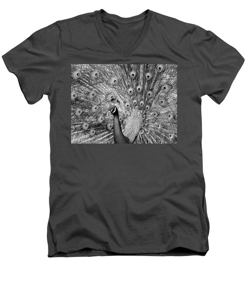 Mother Natures Fireworks Men's V-Neck T-Shirt
