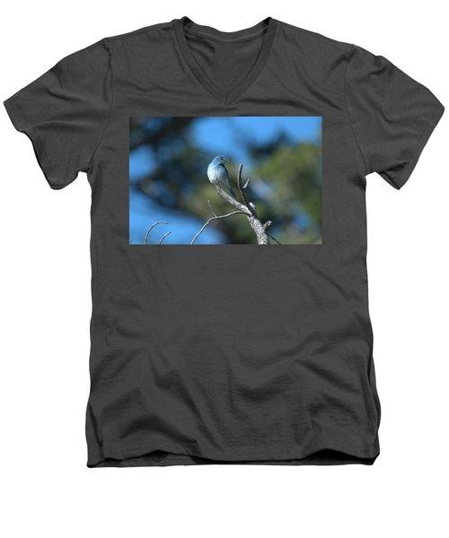 Mountain Bluebird Men's V-Neck T-Shirt