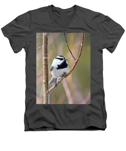 Mountain Chickadee Men's V-Neck T-Shirt